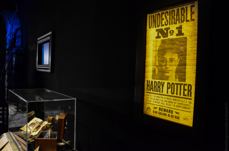 exposition_harry_potter_10