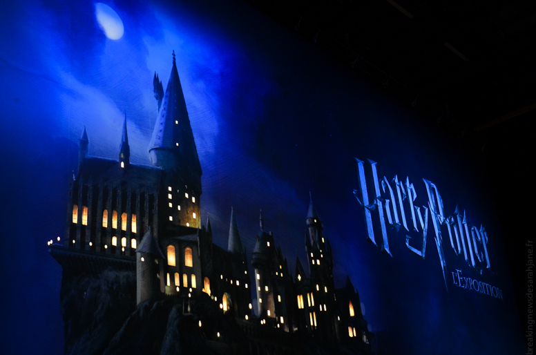 exposition_harry_potter_15