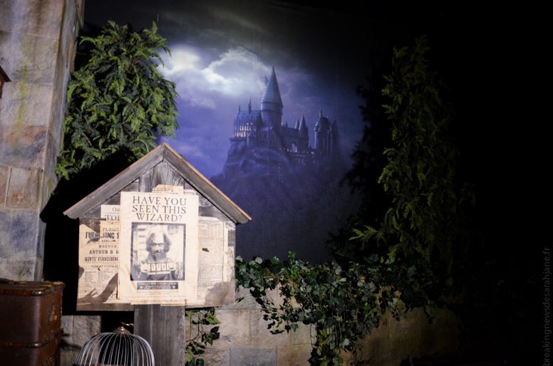 exposition_harry_potter_16