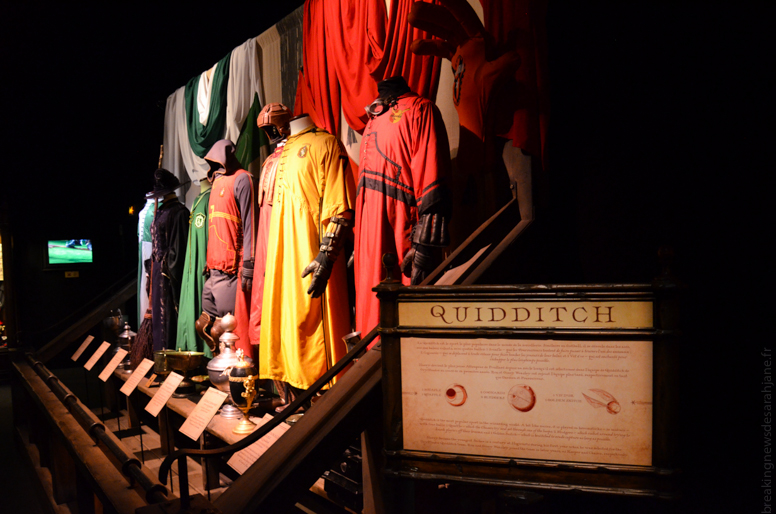 exposition_harry_potter_20