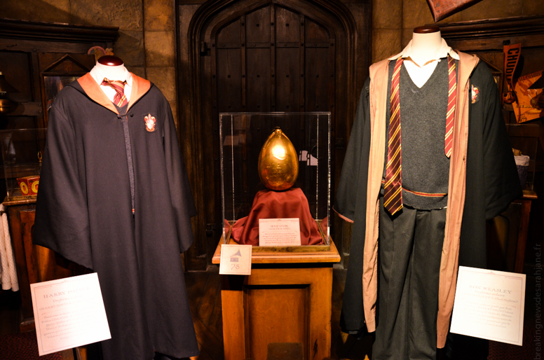 exposition_harry_potter_5